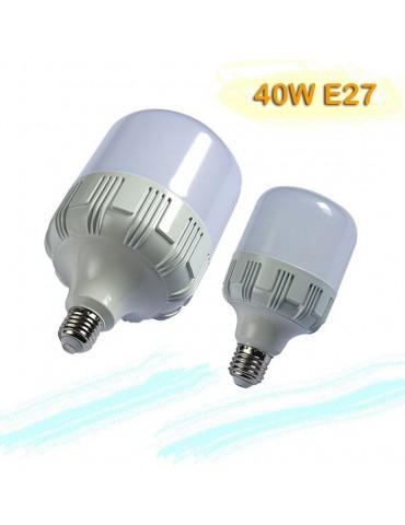 BOMBILLA INDUSTRIAL LED 40W E27 T100 modelos
