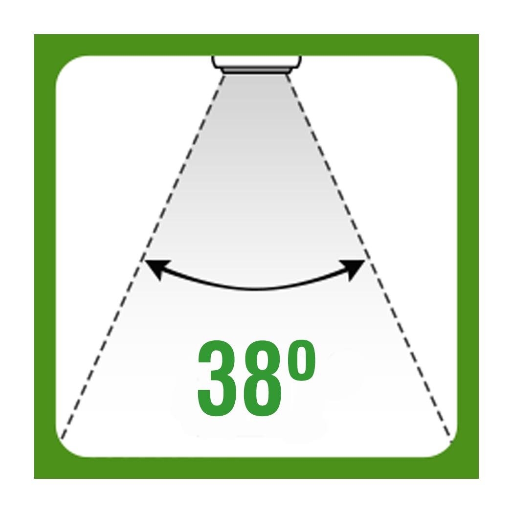 38grados