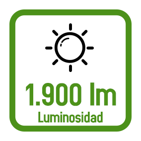 lm1900.png